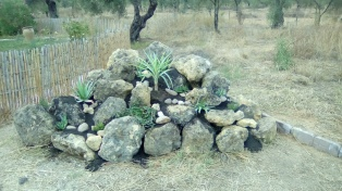 finished rockery
