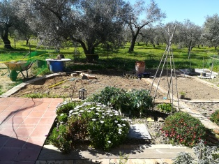 garden extension