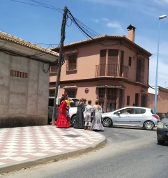 Almonte preparing for the Romeria