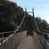 Windsor Suspension Bridge