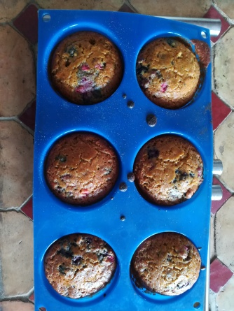 Banana Blueberry Quinoa Muffins